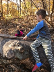 fall forest school