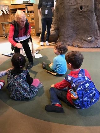 AMNH Field Trip