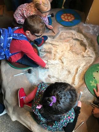 AMNH Fossil Digging