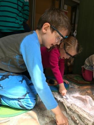 Fossil Digging Together